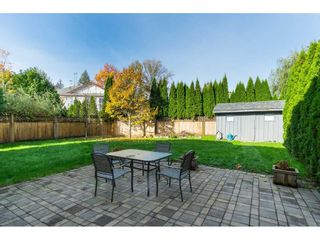 Photo 19: 23923 121 Avenue in Maple Ridge: East Central House for sale : MLS®# R2415031