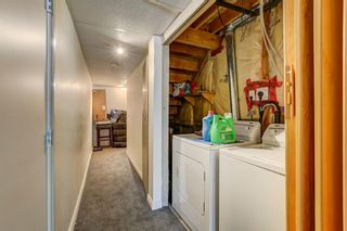 Photo 25: 388 Panatella Boulevard NW in Calgary: Panorama Hills Row/Townhouse for sale : MLS®# A1114400
