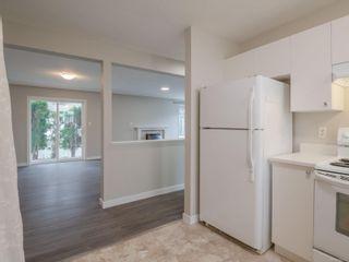 Photo 26: 640 MILTON St in : Na Old City Half Duplex for sale (Nanaimo)  : MLS®# 858227