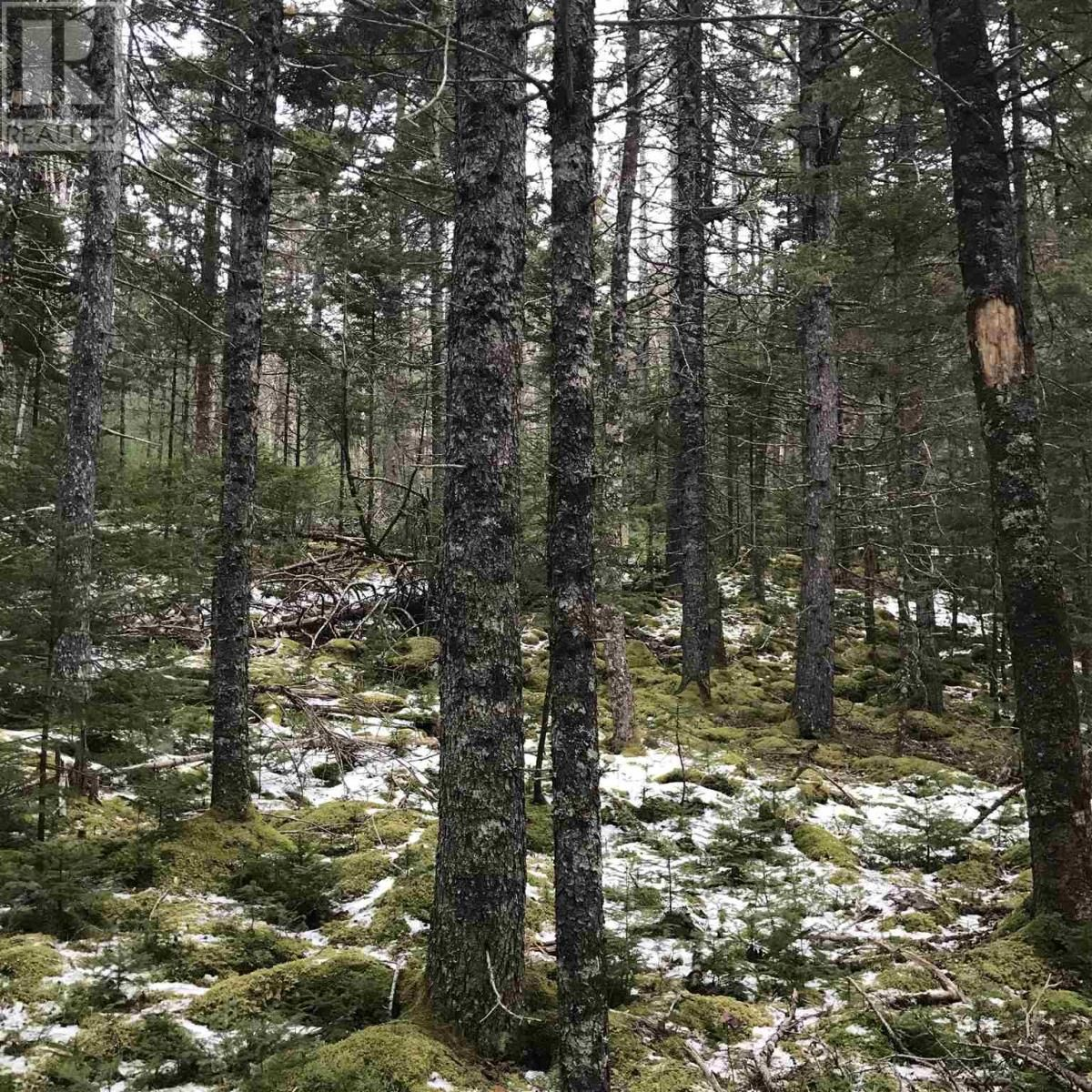 Main Photo: Lot 14 Tupper Lake in Westfield: Vacant Land for sale : MLS®# 202110832