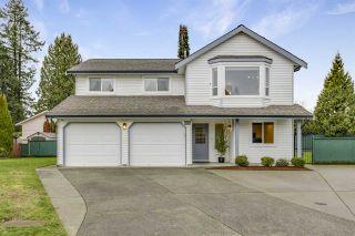 Photo 1: 19549 115B Avenue in Pitt Meadows: South Meadows House for sale : MLS®# R2537303