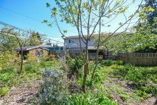 Photo 3: 2106 McKenzie Ave in : CV Comox (Town of) Full Duplex for sale (Comox Valley)  : MLS®# 874890