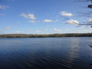 Photo 22: 164 Black Duck Lake Road in East Dalhousie: 404-Kings County Residential for sale (Annapolis Valley)  : MLS®# 202101648