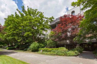 """Photo 20: 106 1945 WOODWAY Place in Burnaby: Brentwood Park Condo for sale in """"Hillside Terrace"""" (Burnaby North)  : MLS®# R2276646"""
