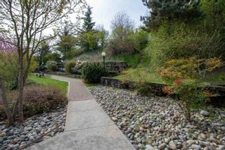 """Photo 23: 206 121 SHORELINE Circle in Port Moody: College Park PM Condo for sale in """"HARBOUR HEIGHTS"""" : MLS®# R2518811"""