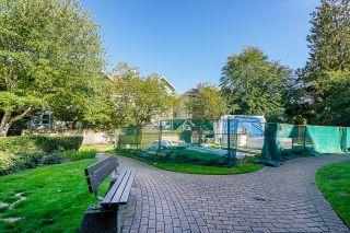 Photo 31: 305 9668 148 Street in Surrey: Guildford Condo for sale (North Surrey)  : MLS®# R2620868