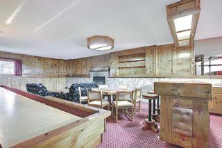 Photo 37: 27 Castlebury Way NE in Calgary: Castleridge Detached for sale : MLS®# A1124500