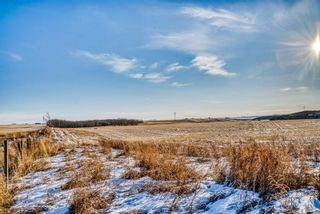 Photo 6: 64099 296 Ave. E: Rural Foothills County Land for sale : MLS®# A1049807