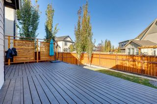 Photo 43: 16 Marquis Grove SE in Calgary: Mahogany Detached for sale : MLS®# A1152905