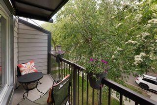Photo 12: 18 10931 83 Street in Edmonton: Zone 09 Condo for sale : MLS®# E4247834