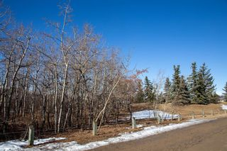 Photo 26: 211 Coachway Road SW in Calgary: Coach Hill Detached for sale : MLS®# A1088141
