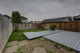 Photo 44: 286 Cranberry Close SE in Calgary: Cranston Detached for sale : MLS®# A1143993