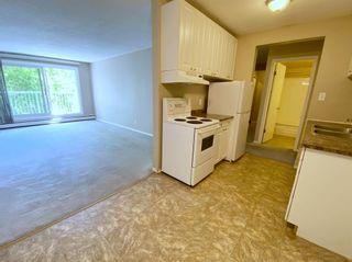 Photo 10: 305 10330 113 Street in Edmonton: Zone 12 Condo for sale : MLS®# E4250079