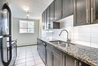 Photo 4: 102 4455A Greenview Drive NE in Calgary: Greenview Apartment for sale : MLS®# A1088042