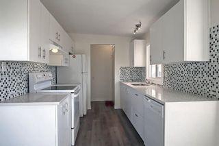 Photo 19: 3036 Doverville Crescent SE in Calgary: Dover Semi Detached for sale : MLS®# A1148570