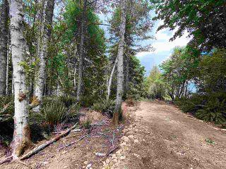 Photo 11: 890 EAGLES REST Lane: Galiano Island Land for sale (Islands-Van. & Gulf)  : MLS®# R2589986