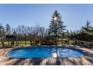 Photo 13: 16910 23RD Avenue in Surrey: Pacific Douglas House for sale (South Surrey White Rock)  : MLS®# R2136702