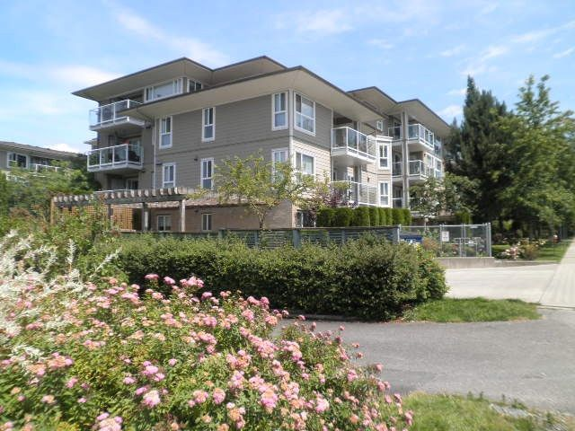 Main Photo: 206 22255 122 Avenue in Maple Ridge: West Central Condo for sale : MLS®# R2086650