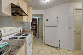 Photo 33: 81 SADDLECREST Park NE in Calgary: Saddle Ridge Detached for sale : MLS®# C4290760