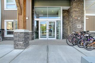 Photo 30: 3205 302 Skyview Ranch Drive NE in Calgary: Skyview Ranch Apartment for sale : MLS®# A1077085