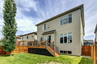 Photo 25: 884 Windhaven Close SW: Airdrie Detached for sale : MLS®# A1129007