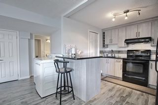 Photo 40: 12 Panamount Rise NW in Calgary: Panorama Hills Detached for sale : MLS®# A1077246