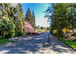 """Photo 20: 1172 CHATEAU Place in Port Moody: College Park PM Townhouse for sale in """"CHATEAU PLACE"""" : MLS®# R2056264"""