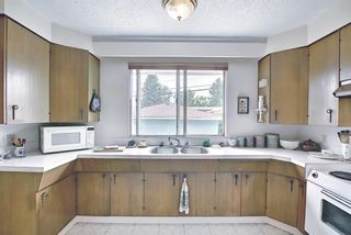 Photo 12: 1223 48 Avenue NW in Calgary: North Haven Detached for sale : MLS®# A1121377