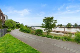 Photo 31: 10 230 SALTER Street in New Westminster: Queensborough Townhouse for sale : MLS®# R2575851
