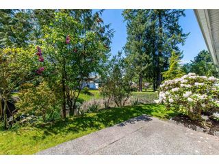 """Photo 14: 100 20655 88 Avenue in Langley: Walnut Grove Townhouse for sale in """"Twin Lakes"""" : MLS®# R2398426"""