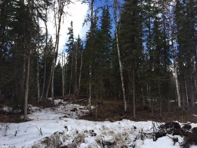 Photo 2: Photos: LOT 1 MARSH Road in Quesnel: Quesnel - Rural West Land for sale (Quesnel (Zone 28))  : MLS®# R2560822