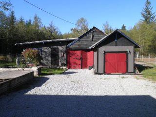 Photo 3: 25085 124 Avenue in Maple Ridge: Websters Corners House for sale : MLS®# R2005352
