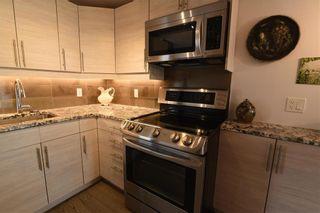 Photo 14: 178 1 Snow Street in Winnipeg: University Heights Condominium for sale (1K)  : MLS®# 202122316
