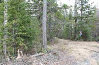 Photo 3: Lot 4 Miller Road in Devon: 30-Waverley, Fall River, Oakfield Vacant Land for sale (Halifax-Dartmouth)  : MLS®# 202007244