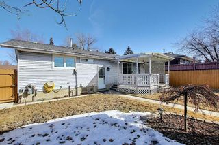 Photo 27: 2735 41A Avenue SE in Calgary: Dover Detached for sale : MLS®# A1082554