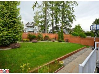 Photo 10: 11083 161A Street in Surrey: Fraser Heights House for sale (North Surrey)  : MLS®# F1213145