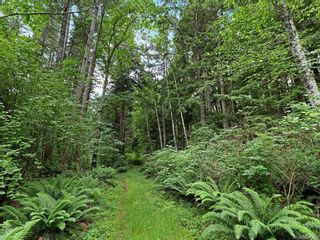 Photo 54: Lot 2 Eagles Dr in : CV Courtenay North Land for sale (Comox Valley)  : MLS®# 869395