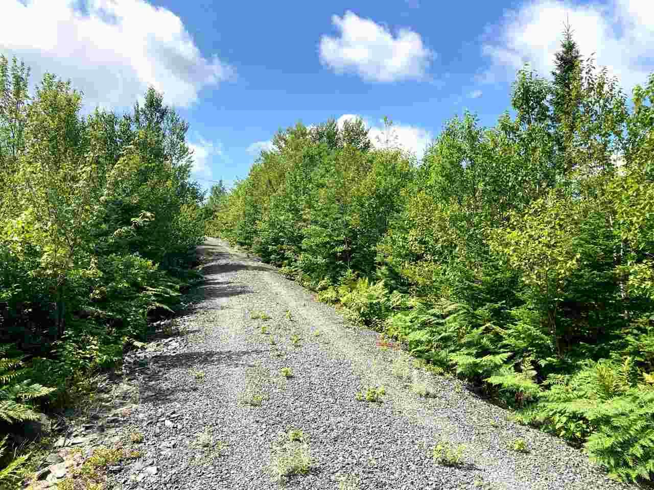 Photo 6: Photos: Lot 6 Anderson Drive in Goldenville: 303-Guysborough County Vacant Land for sale (Highland Region)  : MLS®# 202016652