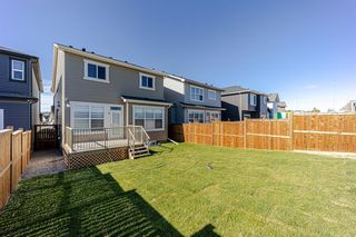 Photo 42: 144 Nolanhurst Heights NW in Calgary: Nolan Hill Detached for sale : MLS®# A1121573