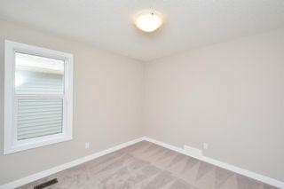 Photo 38: 52 Savanna Road NE in Calgary: Saddle Ridge House for sale : MLS®# C4119489