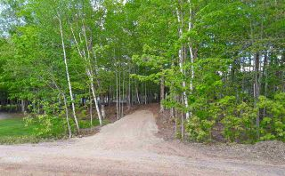 Photo 3: 11 Palmer Road in Harmony: 404-Kings County Vacant Land for sale (Annapolis Valley)  : MLS®# 202006110