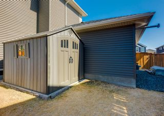 Photo 48: 137 Kinniburgh Gardens: Chestermere Detached for sale : MLS®# A1088295
