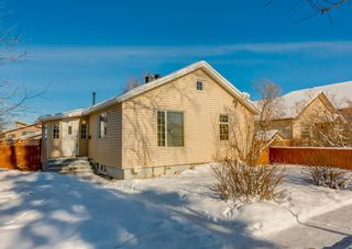 Main Photo: 236 25 Avenue NE in Calgary: Tuxedo Park Detached for sale : MLS®# A1069084