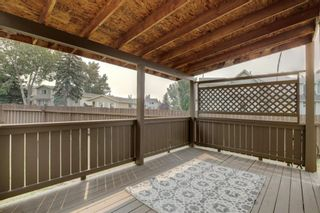 Photo 28: 92 Erin Croft Crescent SE in Calgary: Erin Woods Detached for sale : MLS®# A1136263