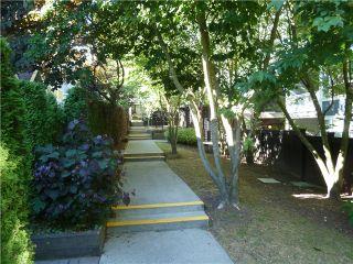 """Photo 11: 208 6893 PRENTER Street in Burnaby: Highgate Condo for sale in """"Ventura"""" (Burnaby South)  : MLS®# V1020005"""