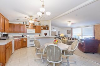 Photo 4: FALLBROOK Manufactured Home for sale : 2 bedrooms : 3909 Reche Road #177