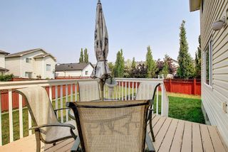 Photo 8: 78 Coventry Crescent NE in Calgary: Coventry Hills Detached for sale : MLS®# A1132919