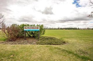 Photo 49: 35 903 109 Street in Edmonton: Zone 16 Townhouse for sale : MLS®# E4253834