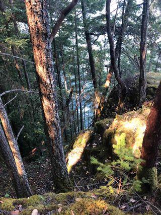 Photo 9: DL 2375: Bowen Island Land for sale : MLS®# R2597532