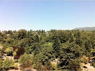 Photo 14: 1002 1327 E KEITH Road in North Vancouver: Lynnmour Condo for sale : MLS®# V1130211